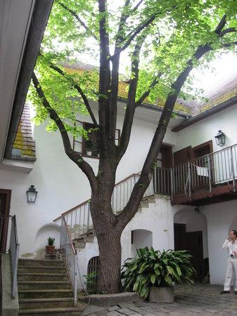 Heiligenstadter Testamenthaus