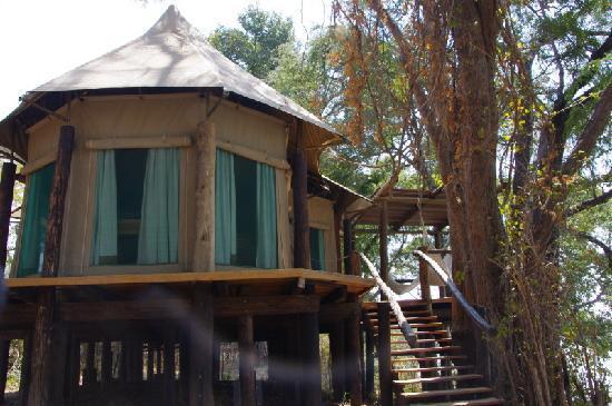 Chindeni Bushcamp - The Bushcamp Company: tent exterior2