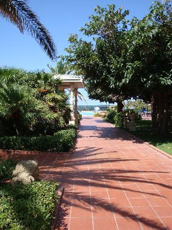 Florio Park Hotel : viale piscina