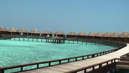 Baros Maldives : sur Piloti/ BAROS