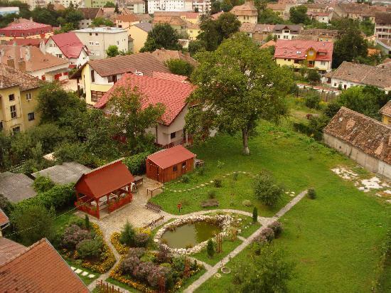 Golden Tulip Ana Tower Sibiu: Aussblick aus einem anderen Zimmer auf einen bellenden Hund