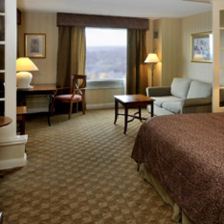 Hilton Niagara Falls Fallsview Hotel Suites 101 1 4 1 Updated 2018 Prices Reviews