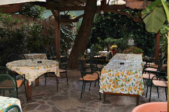 Enoteca Bacco : Giardino