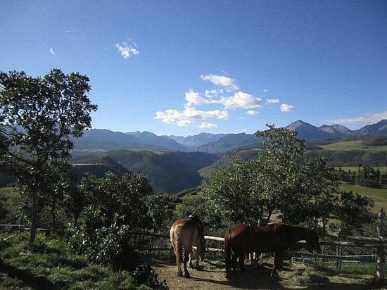 Telluride Horseback Adventures - Ride with Roudy