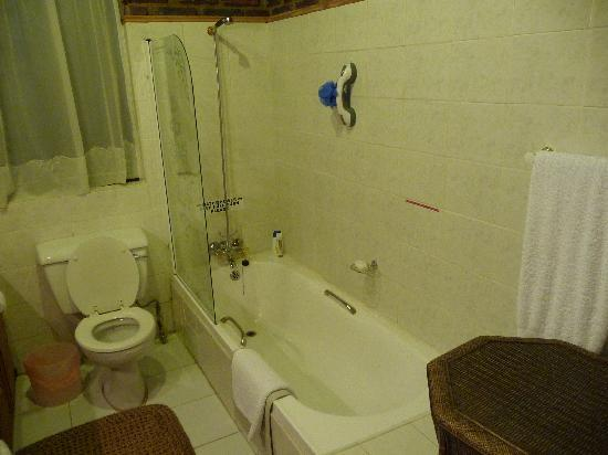 The Great Florida Hills B&B: Bathroom