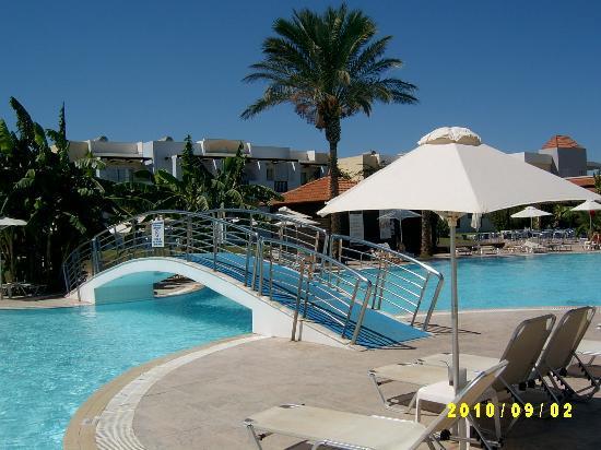 Zorbas Beach Hotel: Poolen