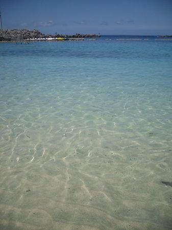 Gran Canaria, España: Playa de los Amadores