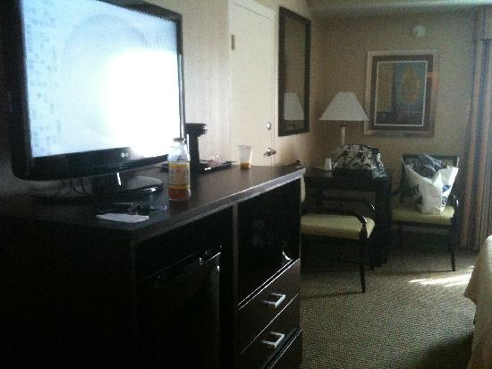 Holiday Inn Plattsburgh: tv