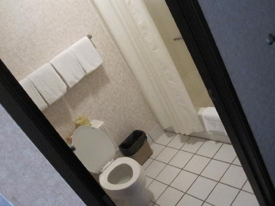 Oasis Inn: Room 210