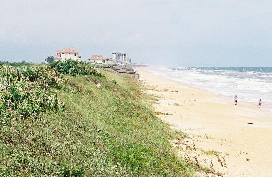 Many Miles Of Private And Scenic Beach In Palm Coast