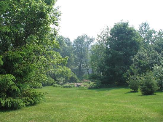 On the Creek Bed & Breakfast: The back yard down to Otter Creek