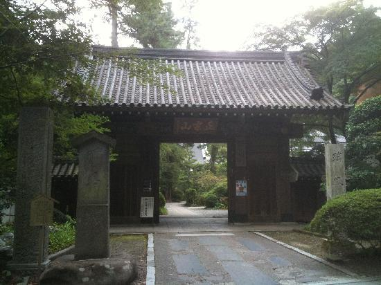 Zuiho Temple: 瑞鳳寺 入口の門
