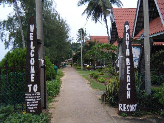 Entrance To Paya Beach Resort Picture Of Paya Beach Spa Dive