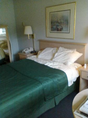 Quality Inn - Ocean Shores: Comfortable bed