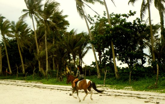 Boracay, Philippines: my horse went really fast and I loved it!