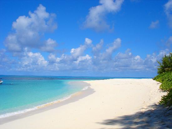 Denis Private Island Seychelles: vue gauche de la plage