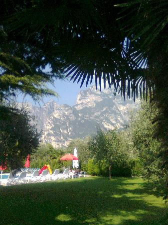 Hotel Villa Verde: particolare parco-giardino