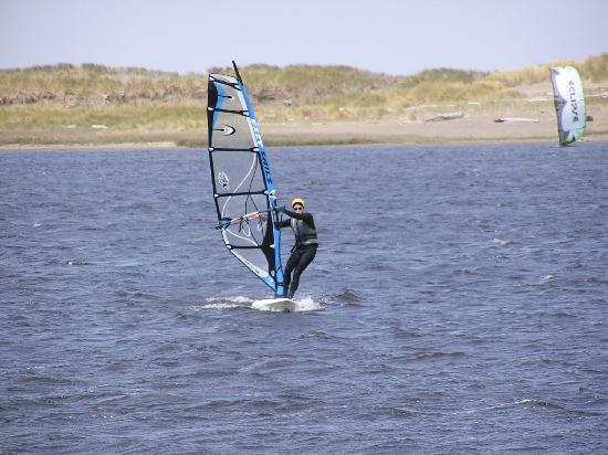Floras Lake House Bed & Breakfast: photo of floras lake with windsurfers and kite boarders