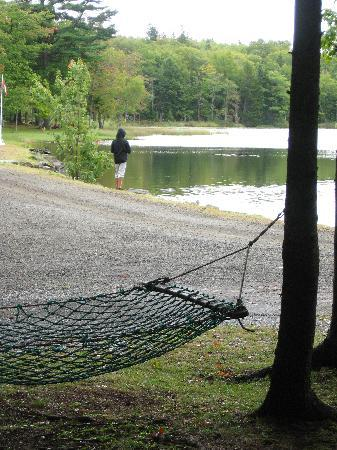 Mountain Top Cottages & Campground: feeding the ducks at the lake