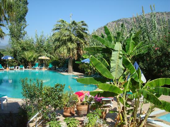 Dalyan Garden Pension: Poolside at the Pension