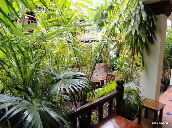 Lotus Villa Boutique Hotel : Tropical garden