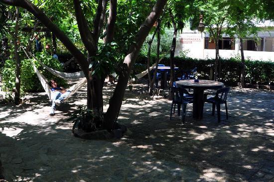 La Casa de Felipe: El bonito jardín