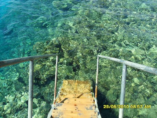 Morgana Beach Resort : pier to coralls