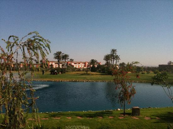 Le Pavillon Du Golf: vue de la suite