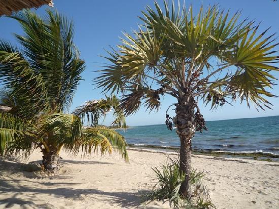 Au Soleil Couchant: La plage, avec une eau cristalline, exempte de toute pollution