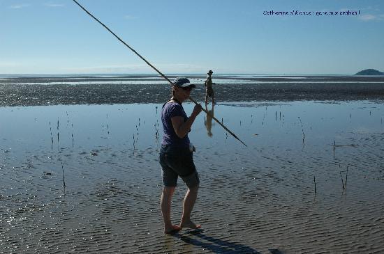 The Hotel Cairns: a faire la chasse au crabe en bord de mer