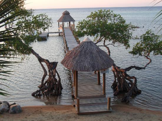 Tranquilseas Eco Lodge and Dive Center: Private dock, carry a hammock out here for a good quite time.