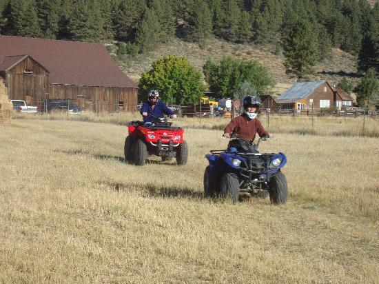 Explore! Sierra Touring Company, LLC : The start of a great experience.