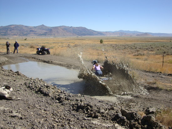 Graeagle, CA: Just can't stay out of the mud!
