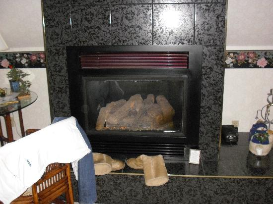 Astor House: Fireplace in our room