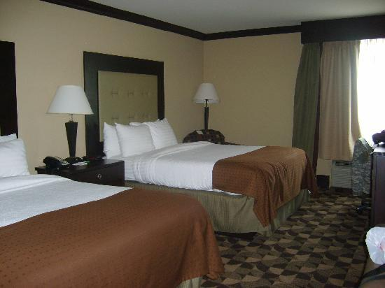 Holiday Inn Express Columbia I-26 at Harbison Boulevard: THE ROOM  THESE BEDS ARE COMFORTABLY LIKE NO ONE IMAGINE