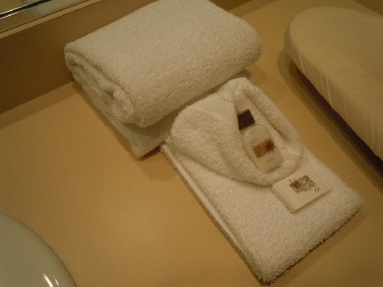 Vienna Wolf Trap Hotel: clean towels