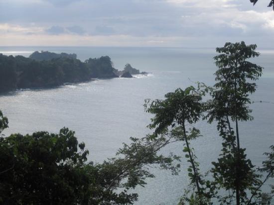 写真Playa Manuel Antonio枚
