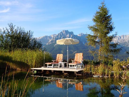 Kaiserhof : mountins Wilder Kaiser view