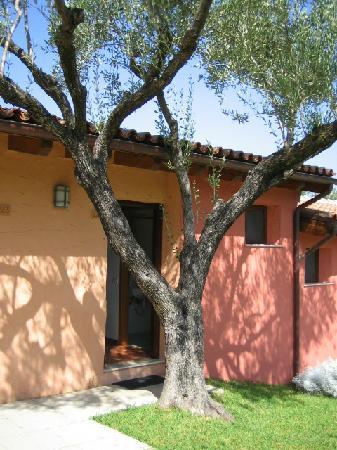 Villaggio degli Olivi: davanti della camera