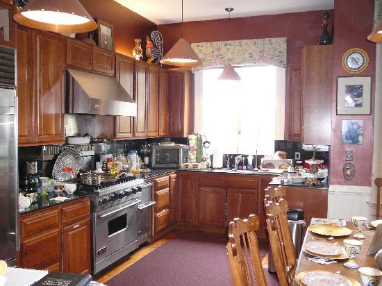 Noe's Nest Bed and Breakfast: Main kitchen area
