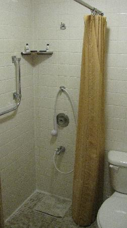 Columbia Gorge Inn: hold the shower with one hand?? no tub/toilette in shower