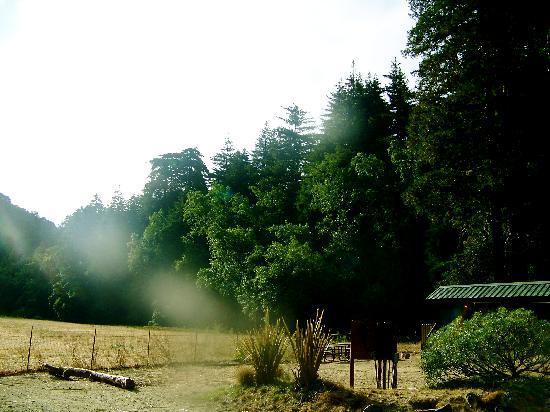 Fernwood Resort: Entrance to State Park
