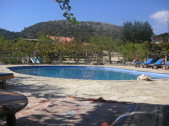 Blacktree Farm and Cottages: No need to put a towel out to get a sun lounger!