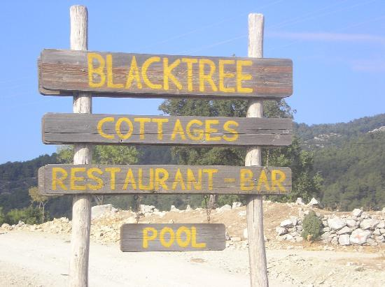 Blacktree Farm and Cottages: We will definitely be going back!