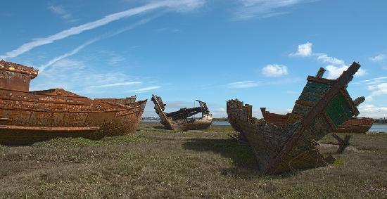 Fleetwood marsh