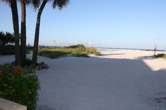 Suncoast Motel: Walk to the beach