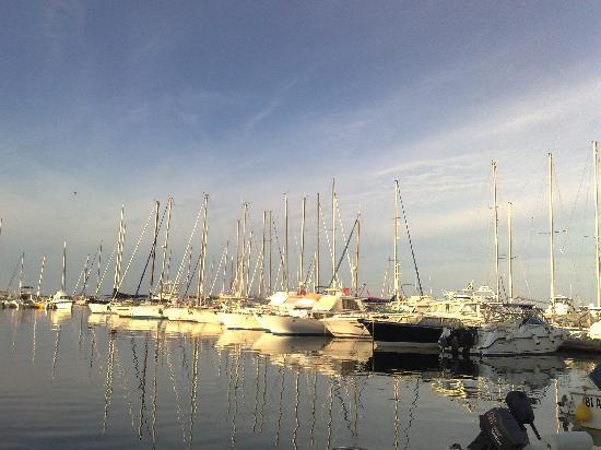 Macinaggio, ฝรั่งเศส: beauté du paysage et calme assurés