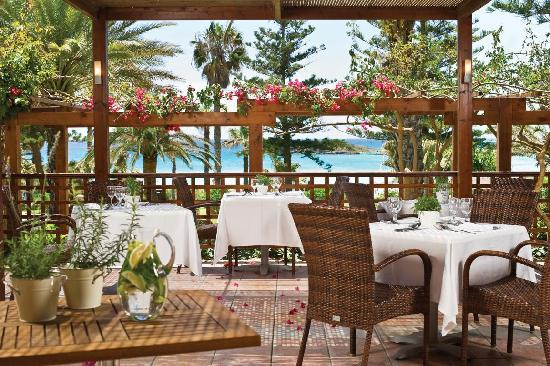 Nissi Beach Resort : Ambrosia Restaurant