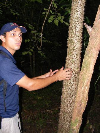 Turu Ba Ri Tropical Park: Our nature walk guide
