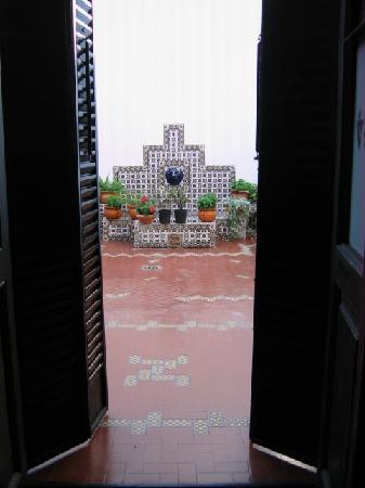 Posada de las Nubes: The view from my door in room 1
